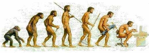evolutiontocomp